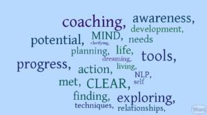 blue-coaching